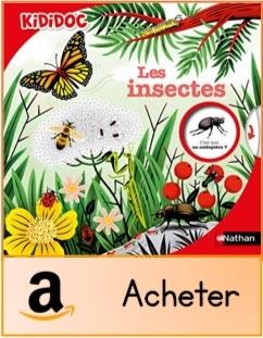 Les insectes Kididoc