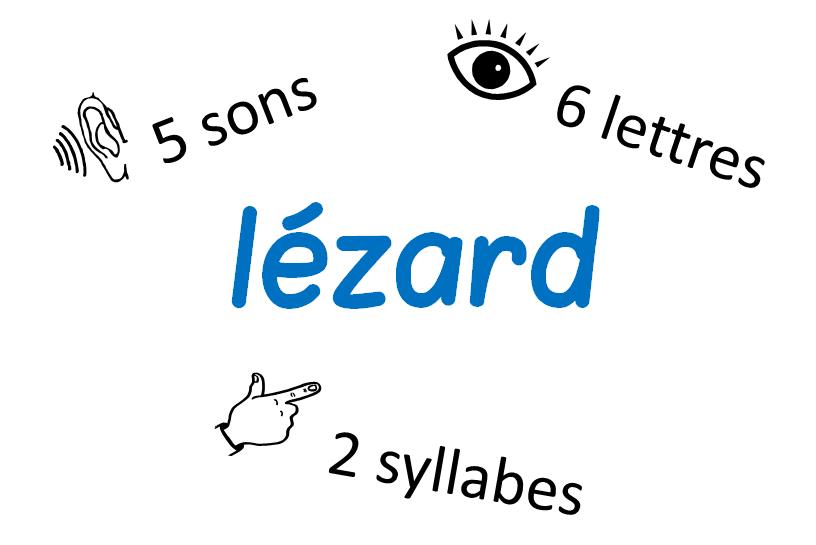 distinction mots lettres sons syllabes