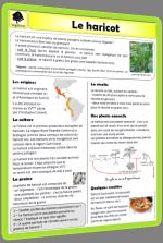 docu-végétaux 1