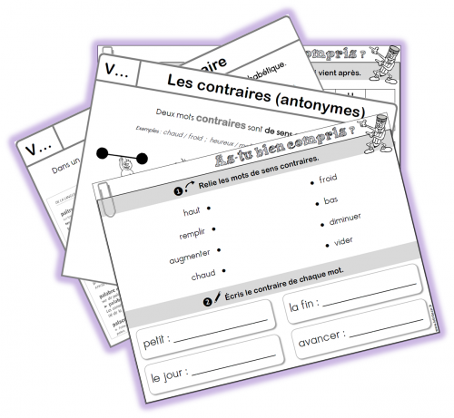 Lecons Etude De La Langue Ce1 Lutin Bazar