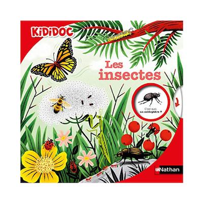 Kididoc insectes