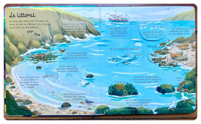 Mers et océans