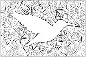 mandala colibri
